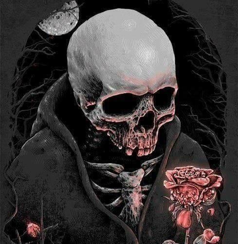 """""""Chaque pétale d'une fleur est une chance. Quand la fleur fane et perd toute ses pétales, alors le sans-faute est obligatoire, sinon la mort frappe à notre porte."""""""