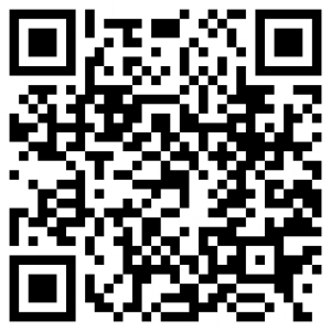 QR code version mobile