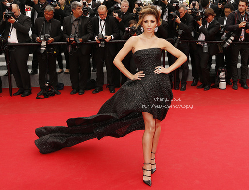 Festival de Cannes 2014