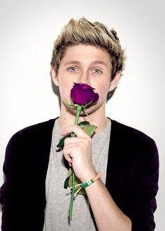 niall je rêve que tu m'offre une rose comme celle-ci