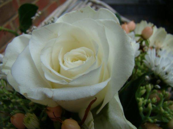 avec le reste des fleurs blanches
