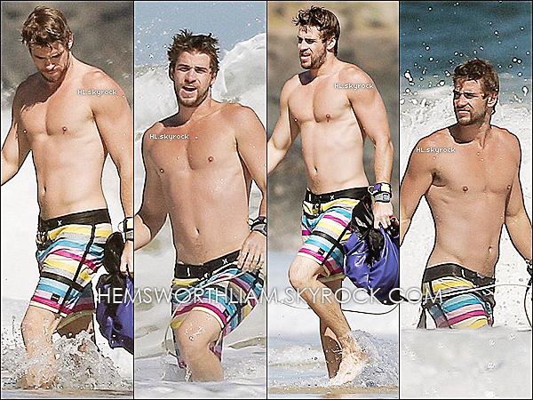 .10/03/13 - Liam a été aperçu sur une plage d'Australie avec ses amis.  .*RUMEURS VRAIES : Liam est en Australie pour faire un break avec Mil' mais attention ça ne veut pas dire qu'ils sont séparés !  *