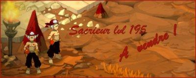 A VENDRE : SACRIEUR 195