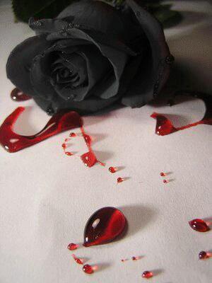 La rose du coeur