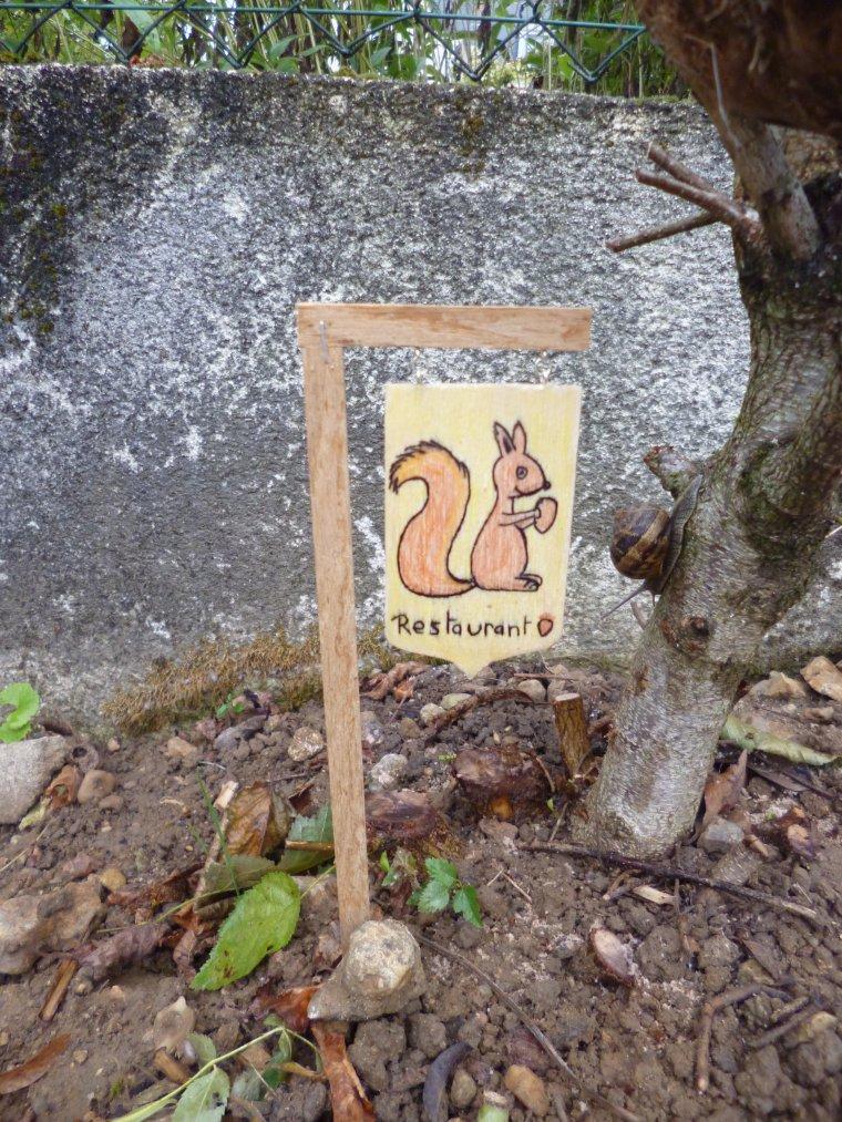 restaurant pour écureuil