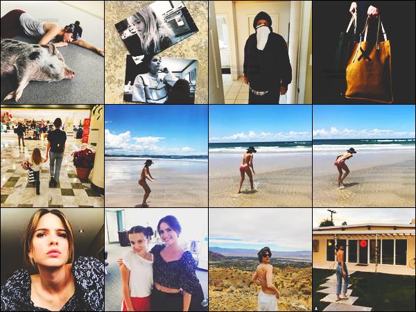 .--INSTAGRAM - Découvrez de récentes photos posté sur @ShelleyHennig, son compte Instagram !