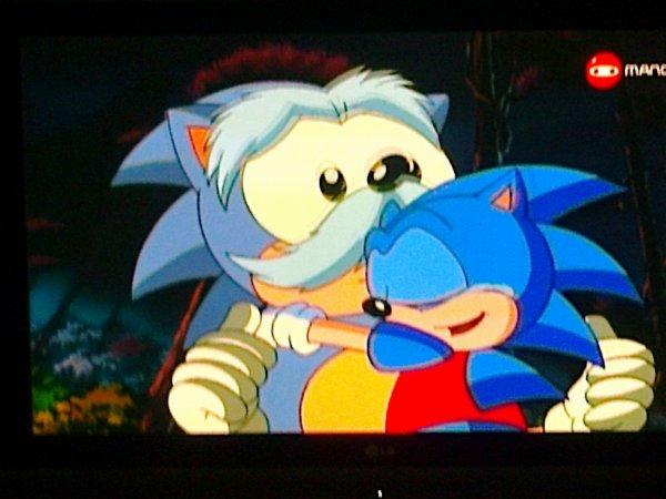 ~ Sonic le Rebelle ~