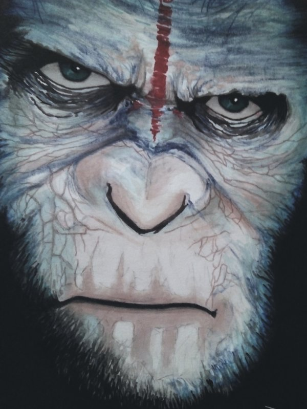 CAESAR - PLANET OF THE APES