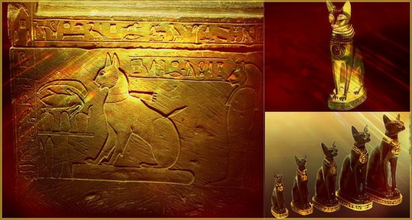 Le chat & l'Egypte