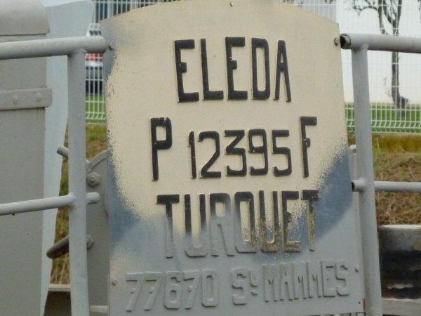 ELEDA