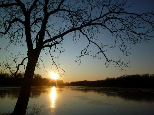 l'étang de Gondrexange