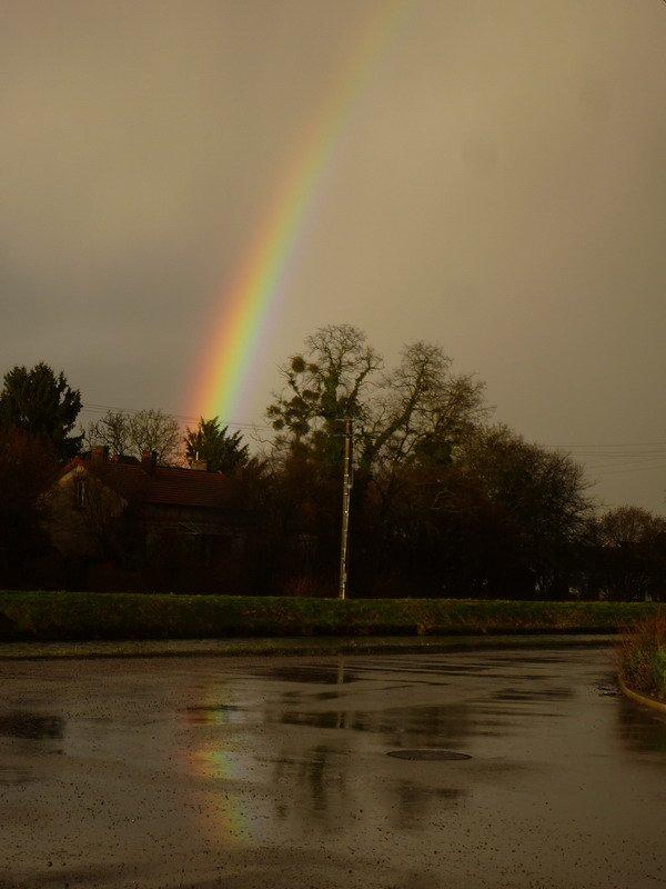 quand la pluie devient belle