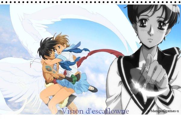 Vision D'Escaflowne  天空のエスカフローネ