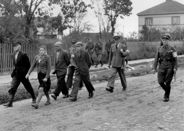 Operation Barbarossa  Russie Blanche  42/44  Divers aperçu ...