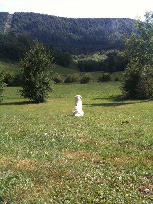 Vacances Dans Le Jura ... [.02 Arrivée