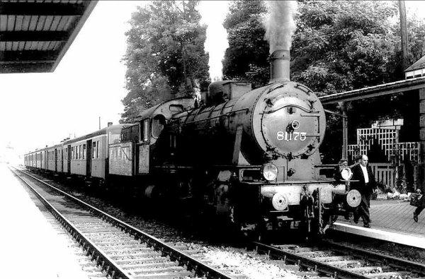 Type 81
