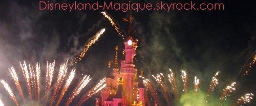 Disney, une passion sans fin..