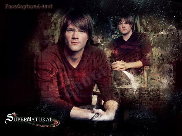 SUPERNATURAL saison 2 (les frères Winchester)