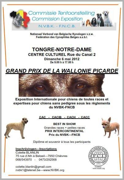 GRAND PRIX DE LA WALLONIE PICARDE