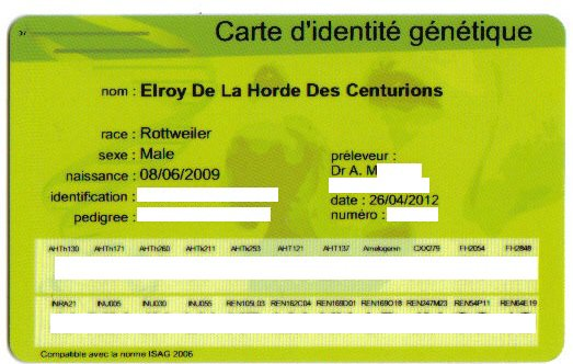 carte d'identité génétique d'elroy