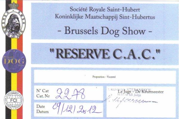 RESULTAT EXPOSITION 09/12/2012