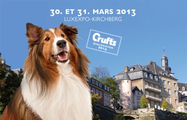 86th INTERNATIONAL DOG SHOW LUXEMBOURG