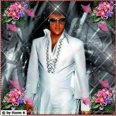 bonjour tous le monde je vous presente une photo magnifique de Elvis♥♥♥ bonne journée a tous le monde♥♥