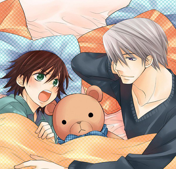 Junjou romantica ~ Usagi x Misaki ♥