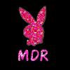 Lapin MDR xD