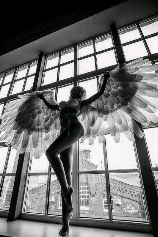 L'Ange Dénudé !!! ♡♡♡