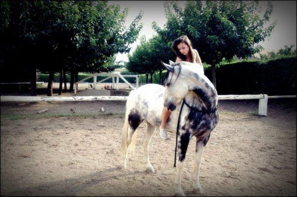 Le cheval est la plus belle conquête de l'homme.