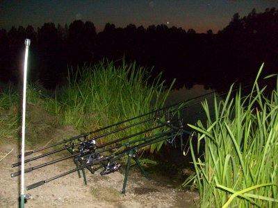 Voila ma batterie rod pod Starbaits, cannes Embleme Xcarpe, moulinets Shimano