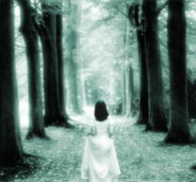 Prologue: Quelqu'un m'a volé mon âme !