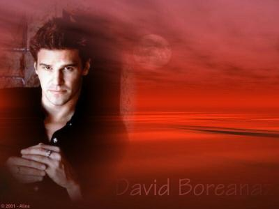 David Boréanaz