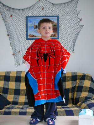 Fan de spiderman