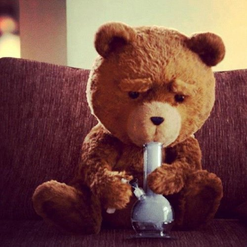 I Love this film  ; TED