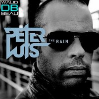 peter luts  /  the rain (2011)