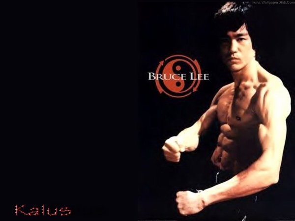 The Dragon La malédiction de Bruce Lee