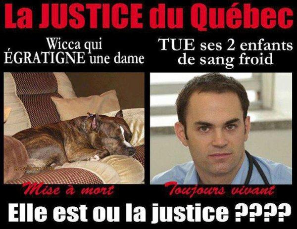 Ou est la justice au Québec???