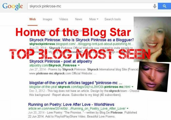 Blog De Pinkrose (de Pinkrose): Skyrock International Blog Star 2012 and 2014