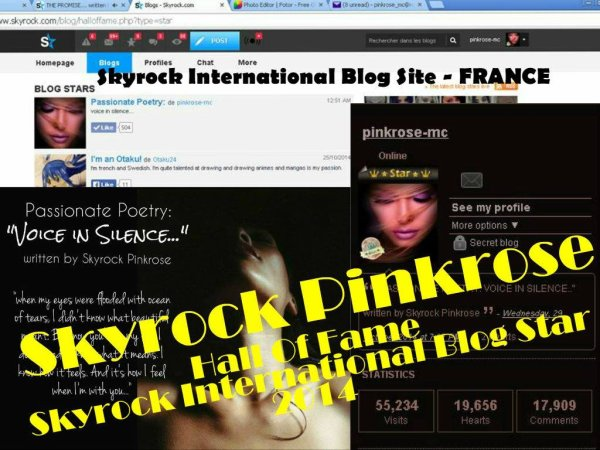 Blog De Pinkrose (de Pinkrose): Skyrock International Blog Star 2012 and 2014