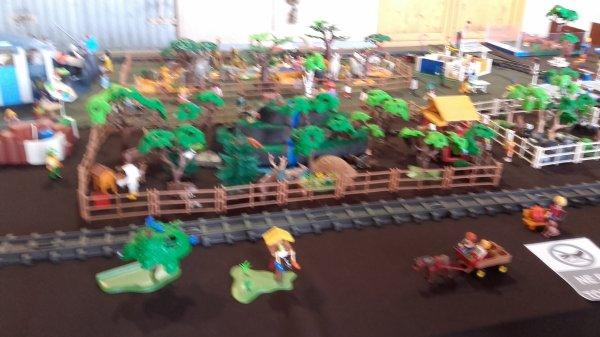 Super exposition playmobil à St-Georges d'Espéranche les 25 et 26 février