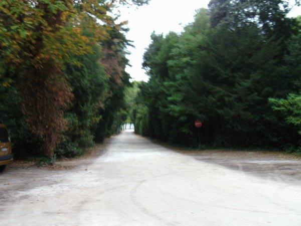 Visite annuelle au Parc Alexis Gruss à Piolenc (Vaucluse) !!! 5