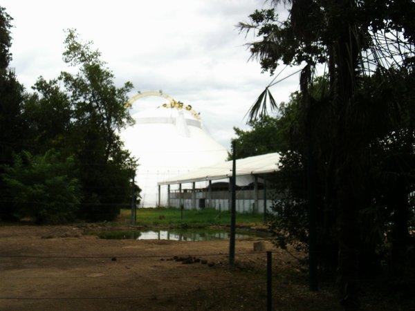 Visite annuelle au Parc Alexis Gruss à Piolenc (Vaucluse) !!! 12