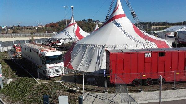 Cirque Arlette Gruss à Lyon au Groupama Stadium ! n°1
