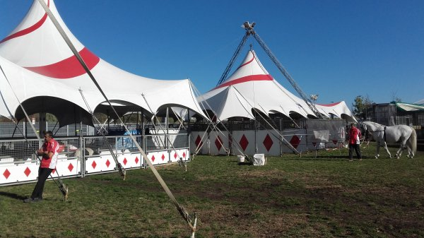 Cirque Arlette Gruss à Lyon au Groupama Stadium !!! n°2
