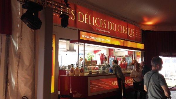 Cirque Arlette Gruss à Lyon au Groupama Stadium !!! n°4