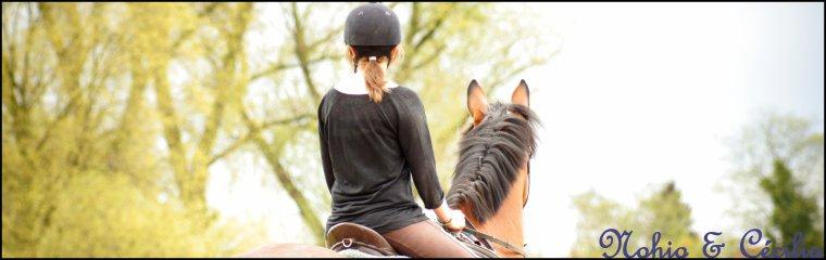 Ce n'est pas une simple histoire, un simple cheval. Ce ne sont pas des mots en l'air, des sentiments éphémères. C'est lui, c'est moi, c'est nous.