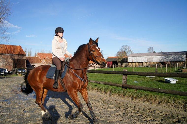 Un cheval ne se regarde pas avec les yeux mais avec le coeur.