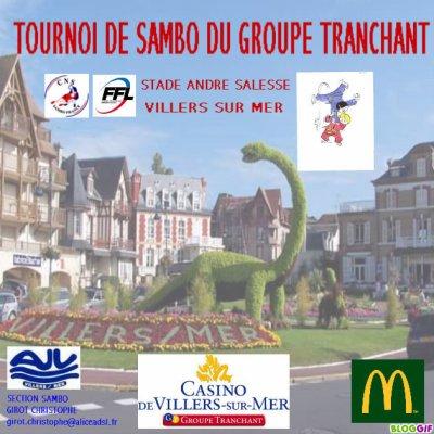 Tournoi de Sambo à Villers sur Mer le 25 juin 2011
